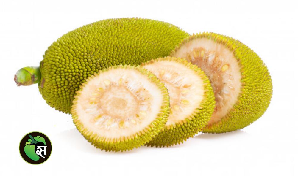 Jackfruit  cut - कटहल कटा