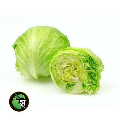 Iceberg lettuce - आइसबर्ग सलाद