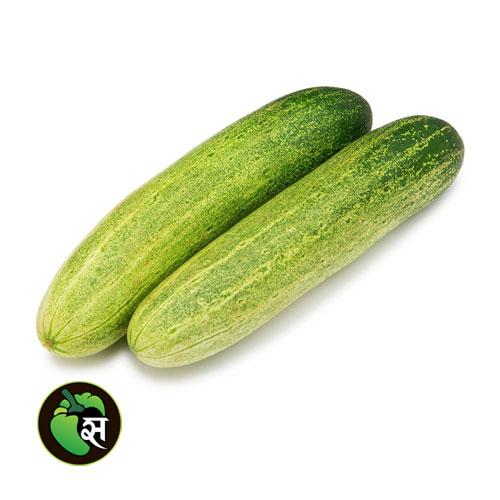 Cucumber Desi - खीरा देसी