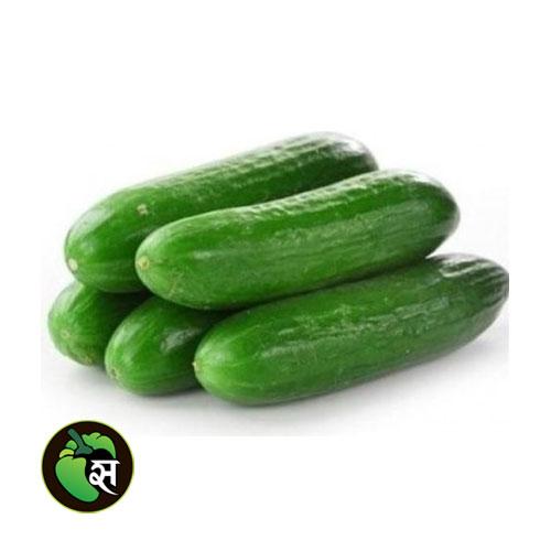 Cucumber English - खीरा अंग्रेजी