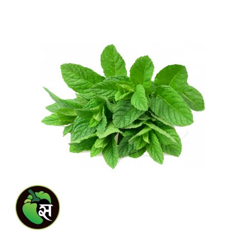 Organic Mint - जैविक पुदीना
